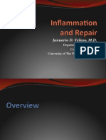 Inflammation and Repair Lecture 2014-15