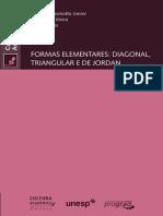 Formas Elementaresp Liv Virtual