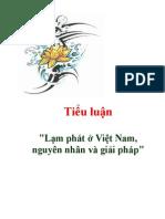 [Tiểu Luận] Lạm Phát ở Việt Nam - Nguyên Nhân & Giải Pháp