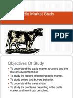 Cattle Market Study