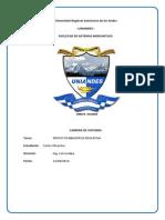 PROYECTO FINAL CARLOS.pdf