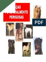 RACAS_POTENCIALMENTE_PERIGOSAS