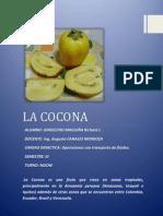 Informe La Cocona