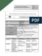 Caracterizacion de Procesos_Sample 2