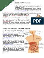 Nutrición y Aparatos Del Cuerpo Humano (2)