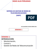 0 Sgr Sem 1 Introduccion Adm de Redes