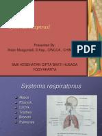 3. Systema Respirasi