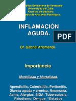 Clase de Inflamación Aguda II 2010