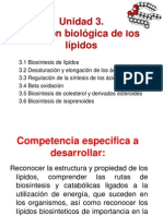 (1)Sintesis de Acidos Grasos