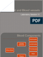 Lab#11-Blood and Blood Vessels-To Forward 1