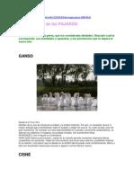 HOROSCOPO PERSA 2009.docx