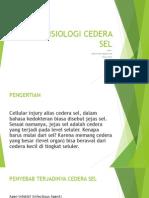 Patofisiologi Cedera Sel