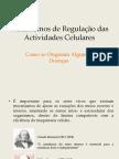 Mecanismos de Regulação Das Actividades Celulare- Militao(1)