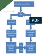 Fluxograma PIM I