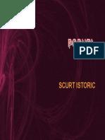 poduri_scurtistoric