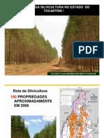 Potencial Silvicultura Tocantins
