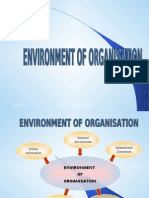 Envoirnment of Organization