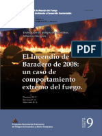 Informe Tecnico Incendio Baradero