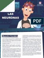 laboratorio-neuri-las-nuronas (1)