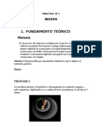 Informe de Meiosis3