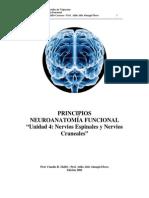 Neuroanatomis Nervios Espinales y Craneales