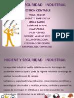 higieneyseguridadindustrial-110615103925-phpapp01