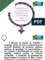 Palestra 2 Mecanismo MTE.pdf