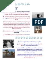 Monográficos La Lluvia