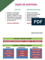 Ciclo de Auditoria y Analisis de Riesgos