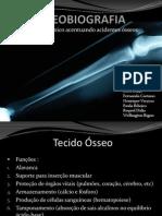 Osteobiografia (Henrique)..