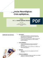 Crisis Epileptica