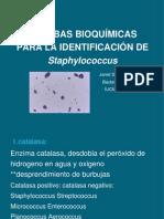 78 Pruebas Bioquímicas Para La Identificación de Staphylococcu