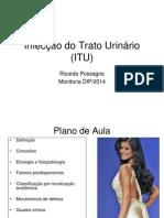 Infecção Do Trato Urinário (ITU)_DIP