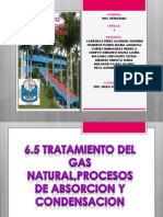 Expo. Gas Natural (1) (1)