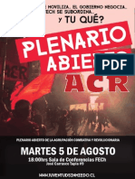 PlenarioAbierto5agosto.pdf