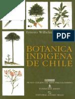 Botanica Indigena de Chile - Ernesto Wilhelm de Mosbach