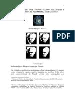 Análisis de Schopenhauer_Rocca