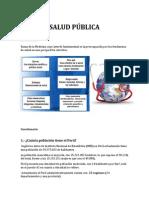 Salud Pública Peru Oficial