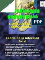 microbiología endodóntica