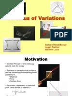 Barbara Wendelberger - Calculus_of_Variations
