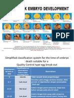 Cobb Chick Embryo Development