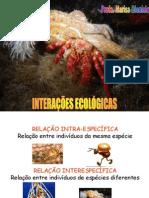 Interaes Ecolgicas Www Unifev Edu Br