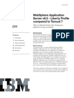 VCR Asset WebSphere Application Server Liberty Profile Compared to Tomcat