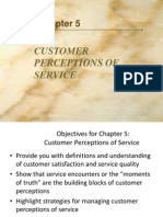Consumer Perceptions of Service