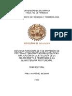 DFIFA Martinez Becerra P Estudios Funcionales
