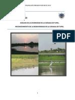 Universidad Del Atlántico Cordados Informe