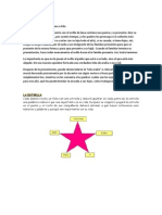 Dinámica Presentación - La Estrella