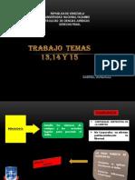 Temas 13, 14 y 15 Derecho Penal