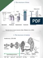 Collagen as a Polymer_ver2