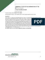 Artigo - Influência Do Ácido Giberélico Na Germinação de Sementes de Oliveira